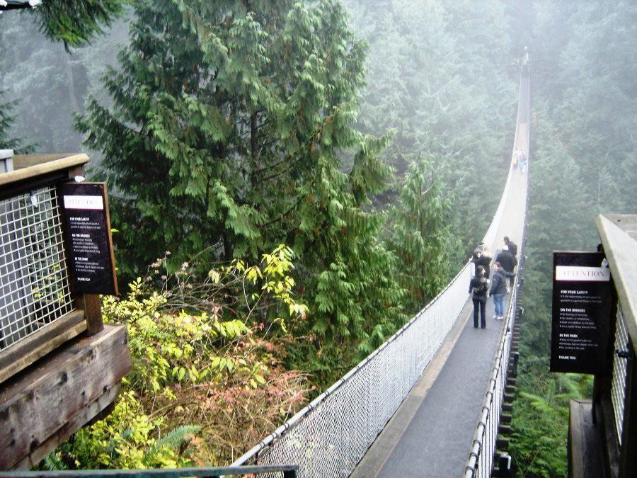 Capilano Suspension Bridge and Cliff Walk North Vancouver