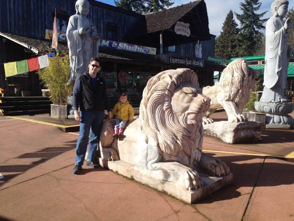 beach club resort parksville lion