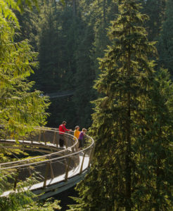 Capilano Suspension Bridge Park North Vancouver