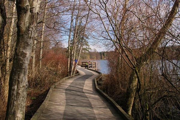 Deer Lake Trail Vancouver
