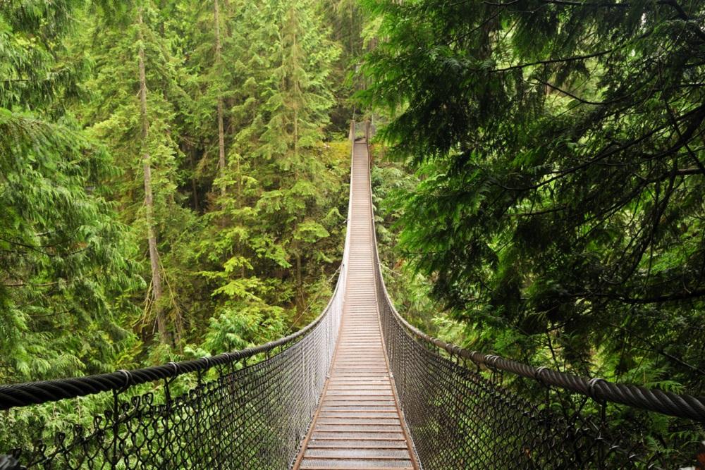 Lynn Canyon Suspension Bridge North Vancouver