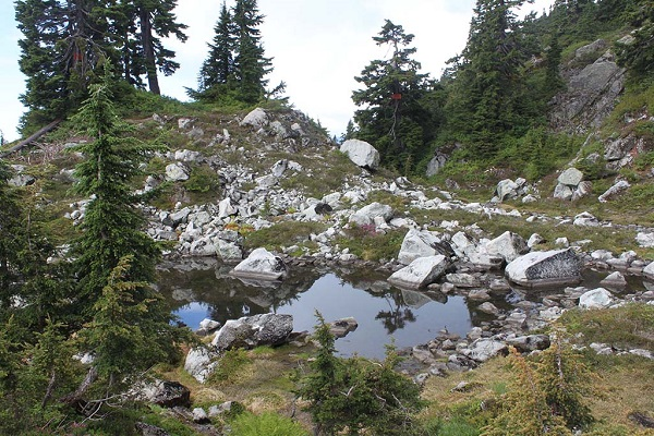 Mount Seymour Trail North Vancouver