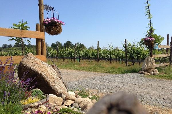 Chaberton Estate Winery Langley
