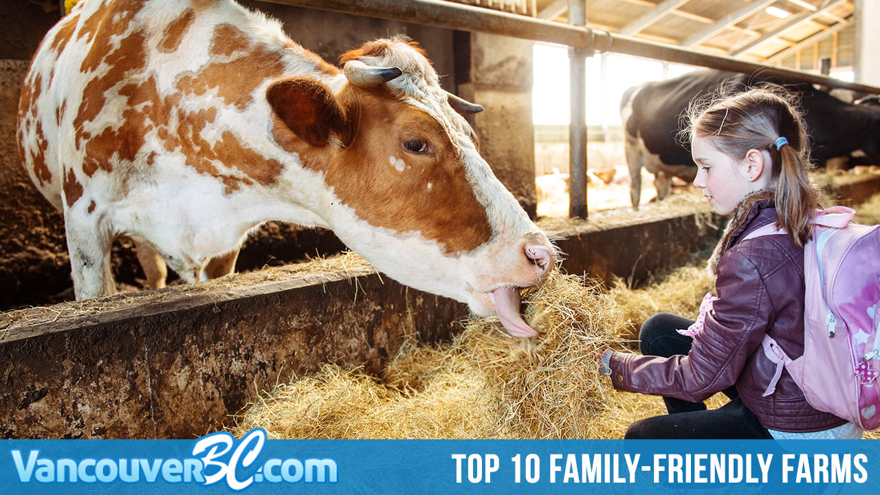 Top 10 Family-Friendly Farms to Visit in Metro Vancouver