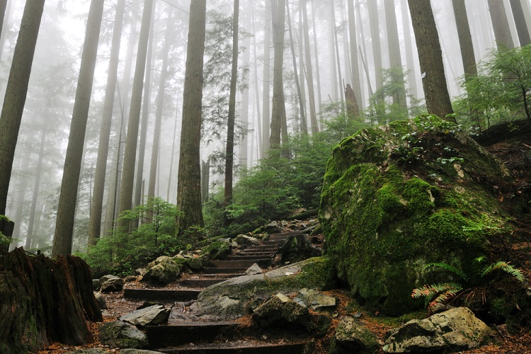 Grouse Grind North Vancouver