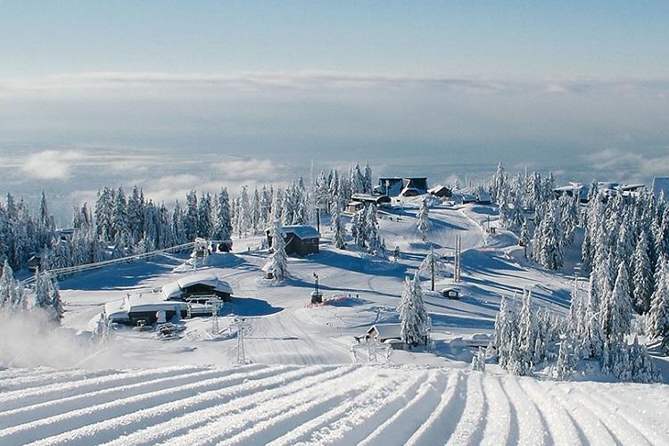 Winter Activities Grouse Mountain